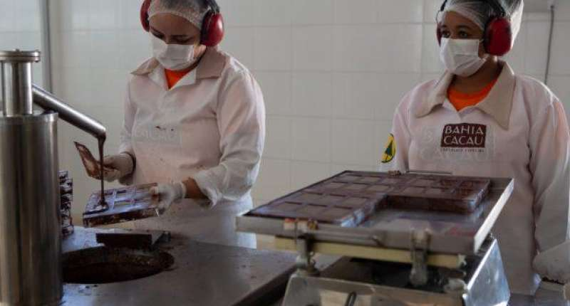 Comercialização de chocolates da agricultura familiar cresce no mercado